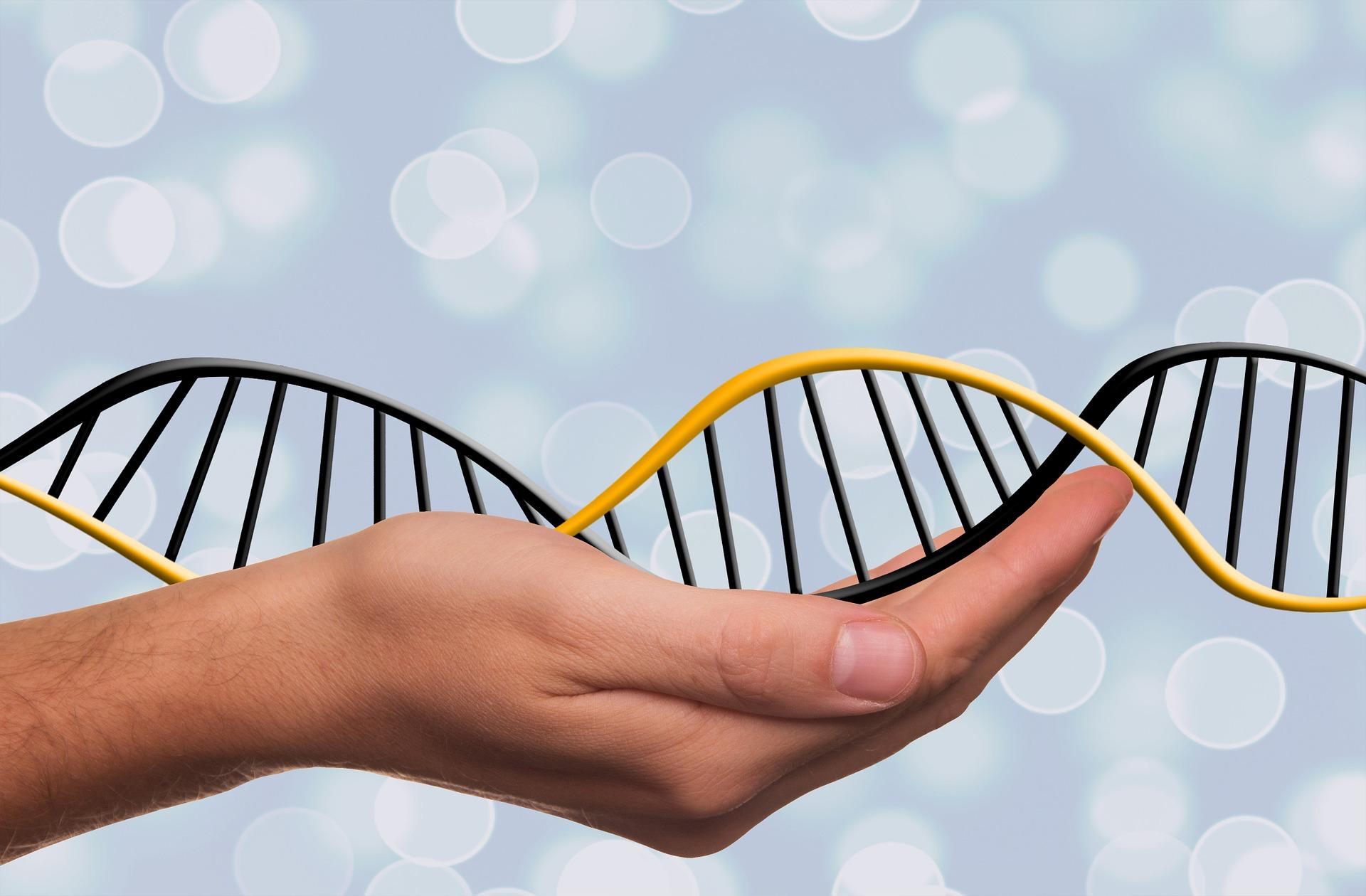 Problemas Genéticos que afetam a alimentação